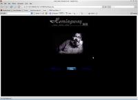 Web stranica - Hemingway